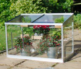 Mini greenhouse growing guide