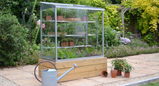 The ideal small Growhouse for an urban garden