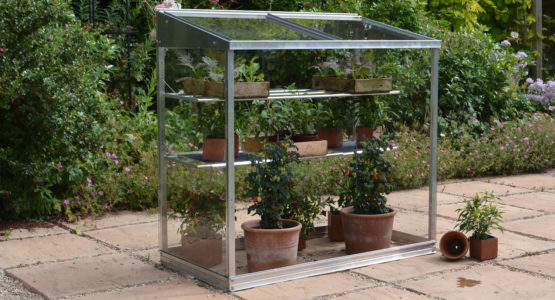 Midi greenhouse – the versatile all-rounder