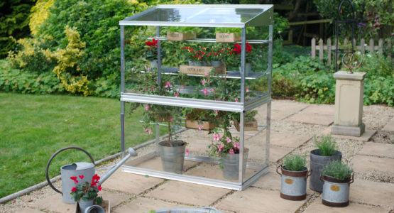 Access 4ft Growhouse – ideal for tender plants