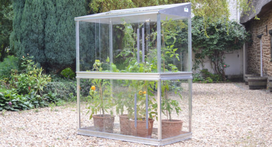 Tomato Houses for bigger and earlier crops
