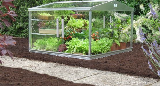 7 Unique Benefits of the Access Cold Frame