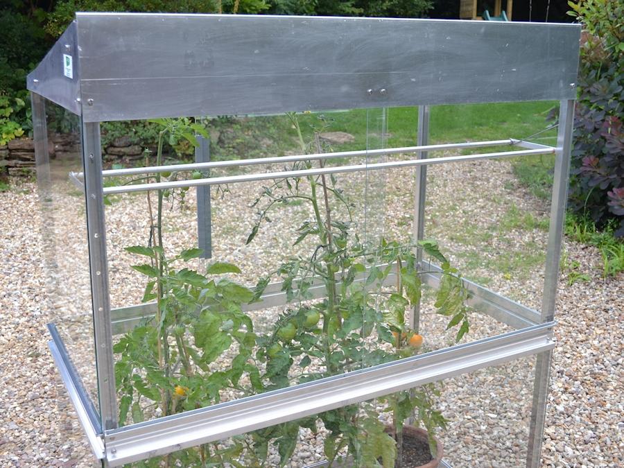 Aluminium and glass Tomato House