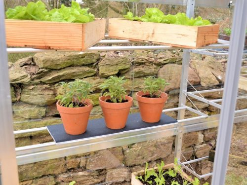 6ft growhouse adjustable shelves
