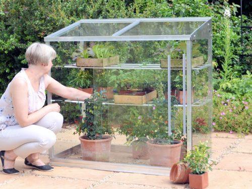 Midi greenhouse