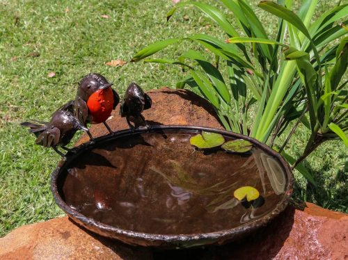rspb robin bird bath metal