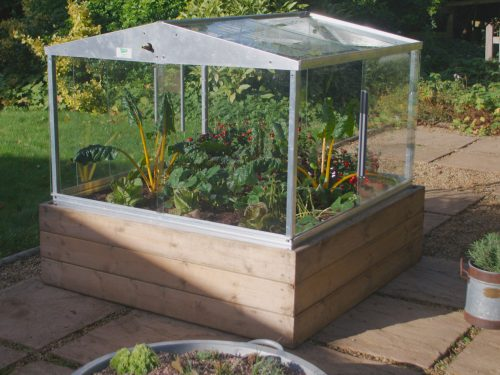 cold frame with timber base