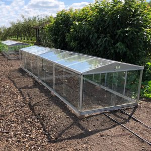Cold Frames at Wisley