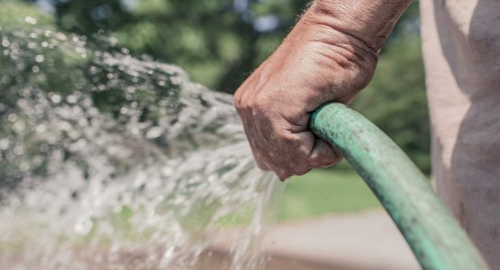 Watering your garden: the complete guide