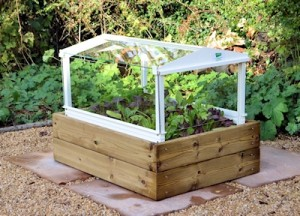 Access herb and salad cloche with timber base